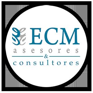 ECM Asesores