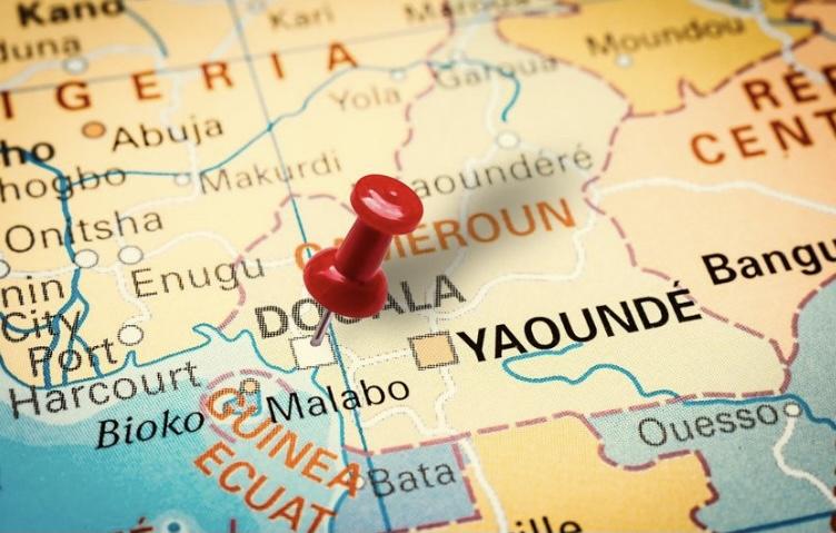 Nueva firma asociada a la red SFAI en Camerún
